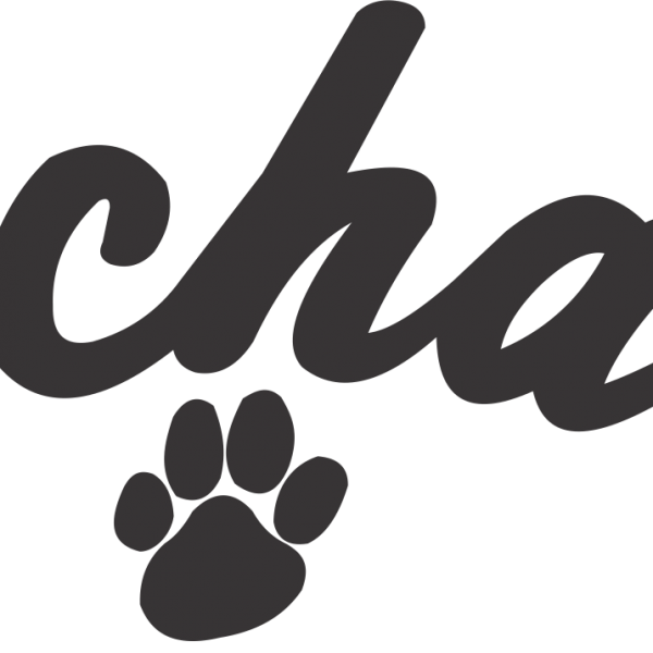 Script Arched with Paws
